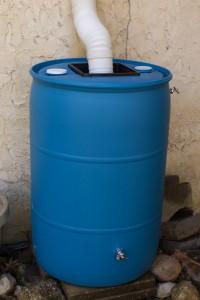 Craigslist Rain Barrel